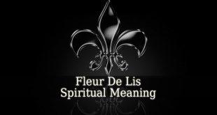 Fleur De Lis Spiritual Meaning