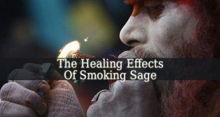 Smoking Sage