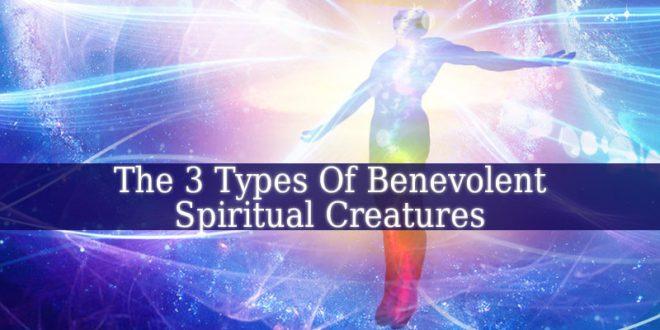 Spiritual Creatures